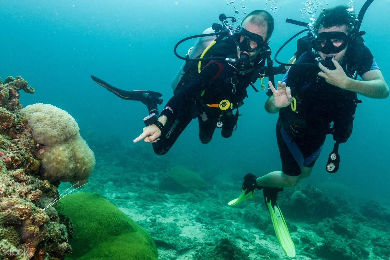 Normative per il Diving a Phi Phi Island